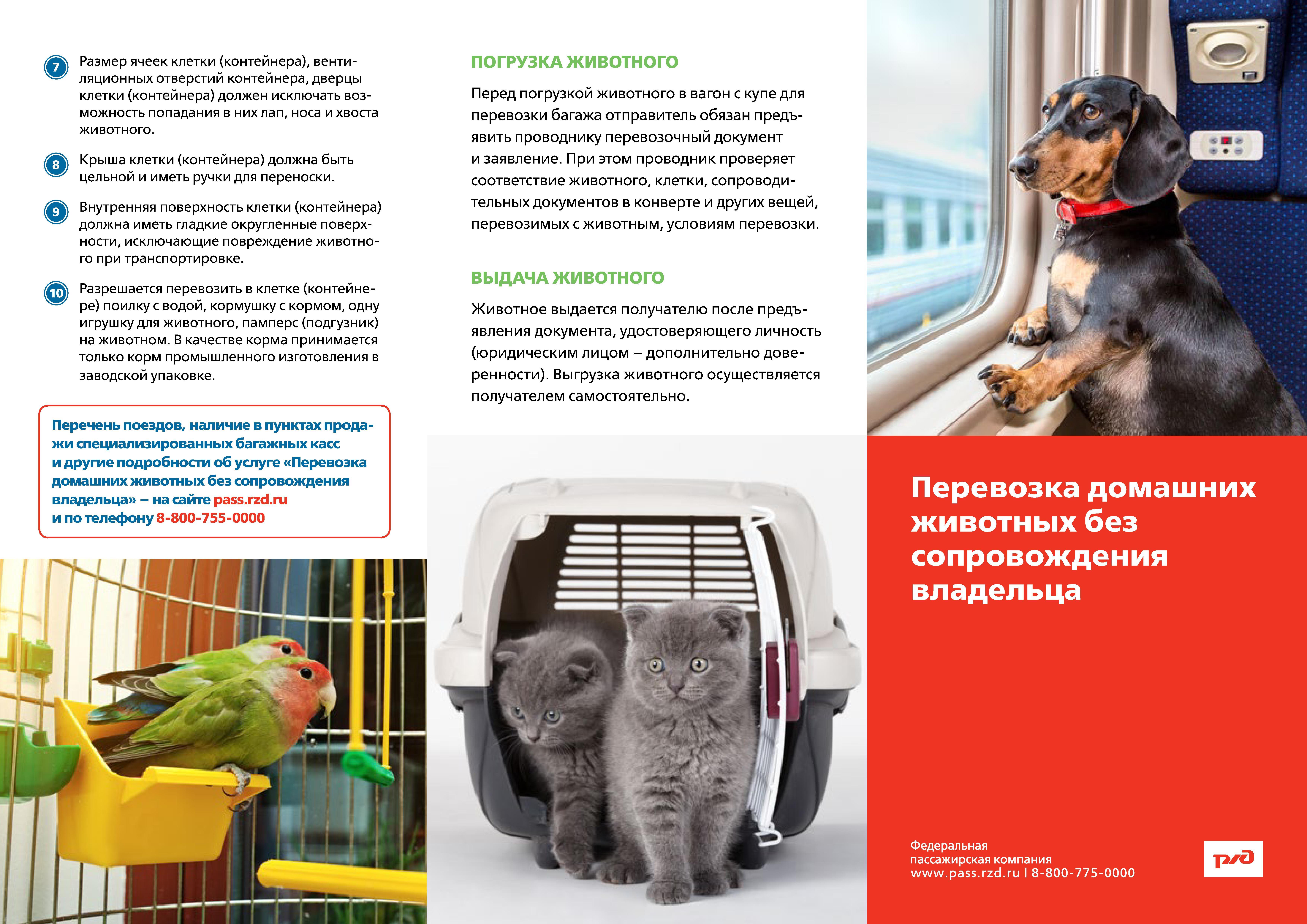 Перевозка мелких домашних животных в пассажирских вагонах нормы расхода топлива на строительную технику